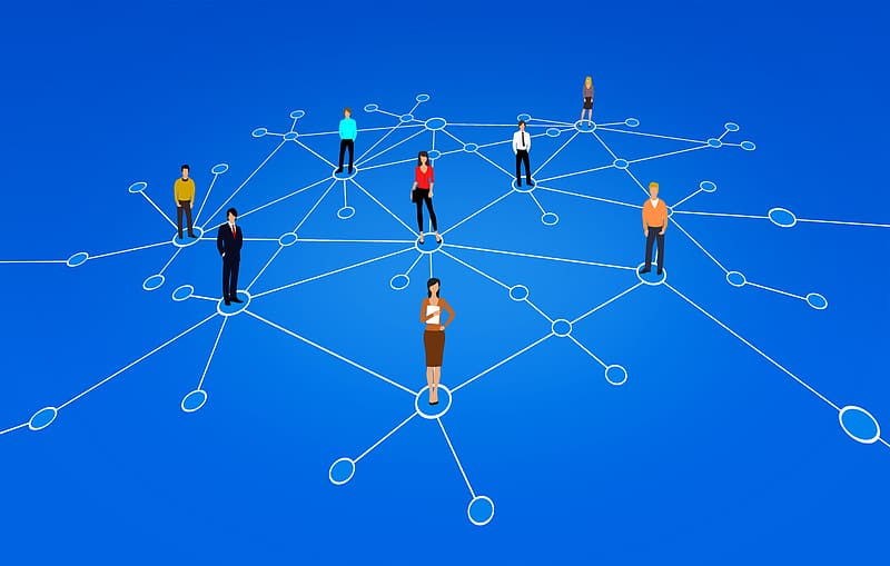 Image of a network of people representing the networker team member role.