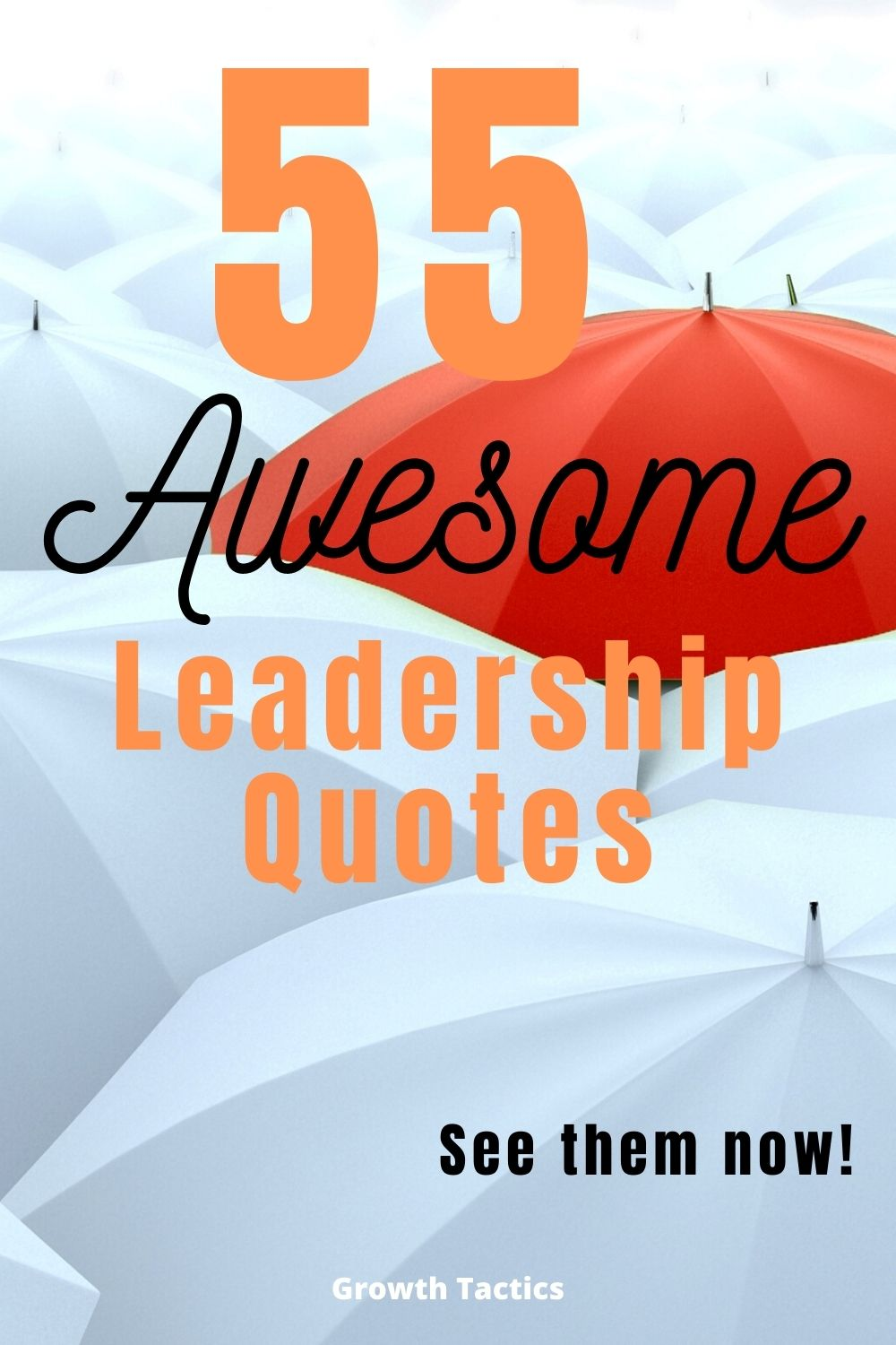 55 Must-See Leadership Quotes That Inspire and Motivate